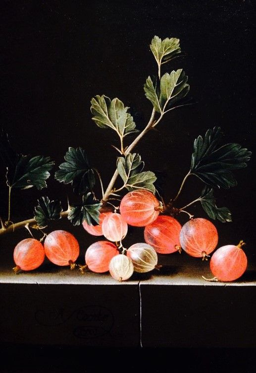 Gooseberries on a Table. 1701