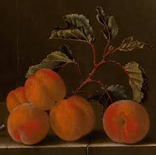 Still life with five apricots. 1704.