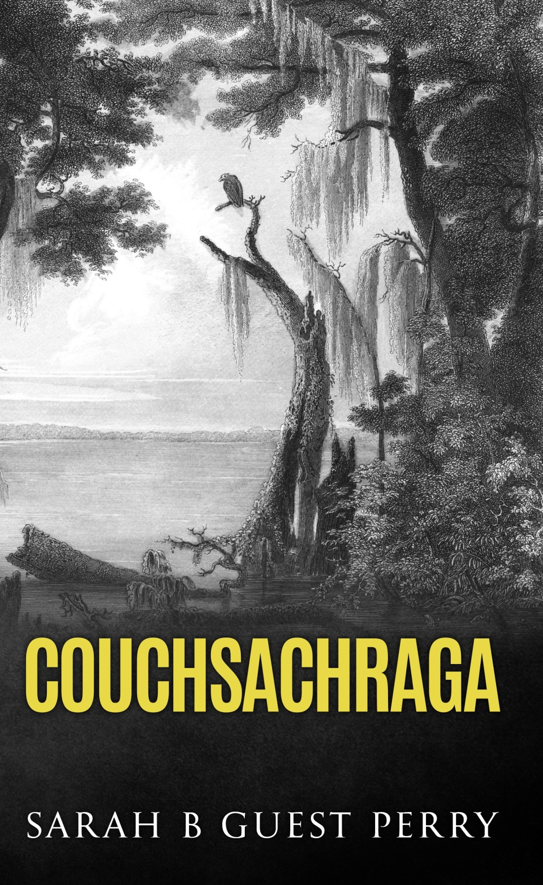 """Couchsachraga"" front cover. 2018."