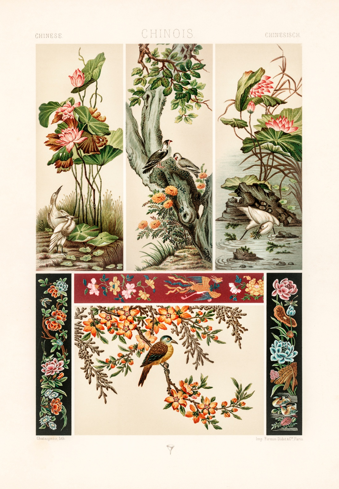 """""""Chinois.""""   Plate 14."""