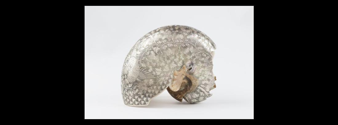 Nautilus shell. 16th c.