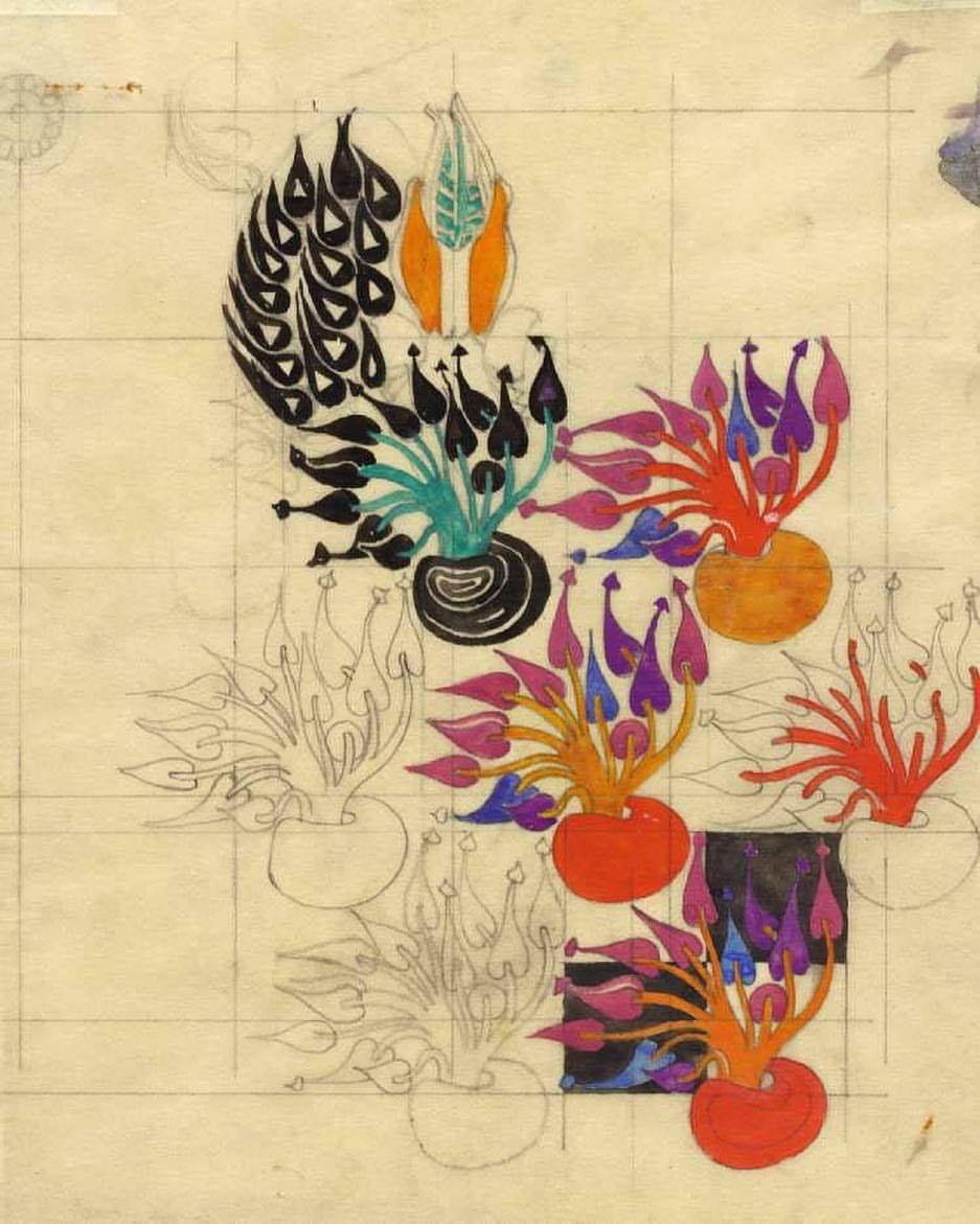 Flowering bulb textile design. 1915-1923.