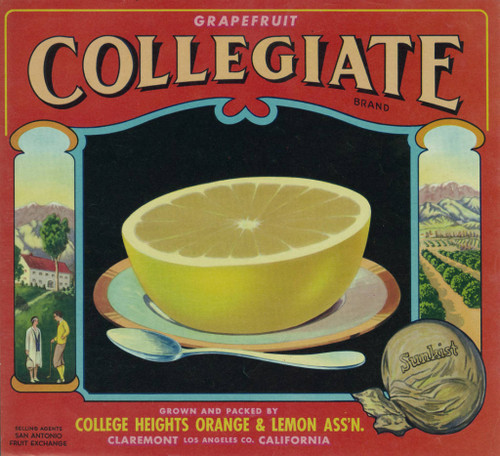 Collegiate grapefruit. College Heights orange and lemon association.