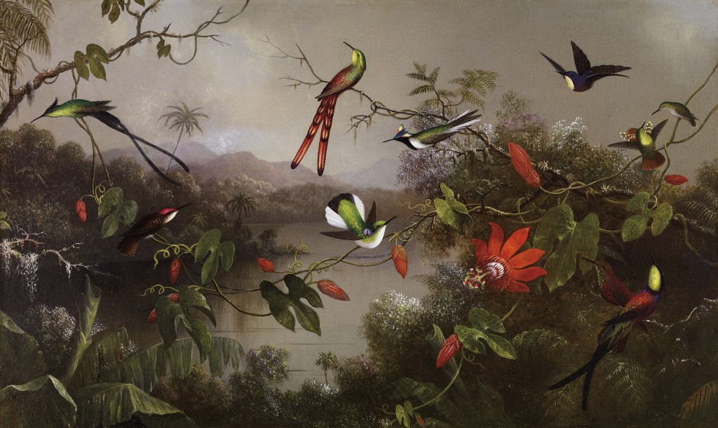 """Tropical Landscape with Ten Hummingbirds."" 1870."