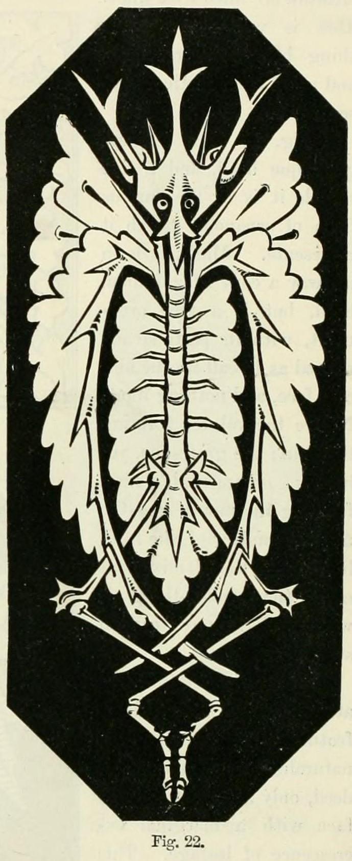 Figure 22, page 28.