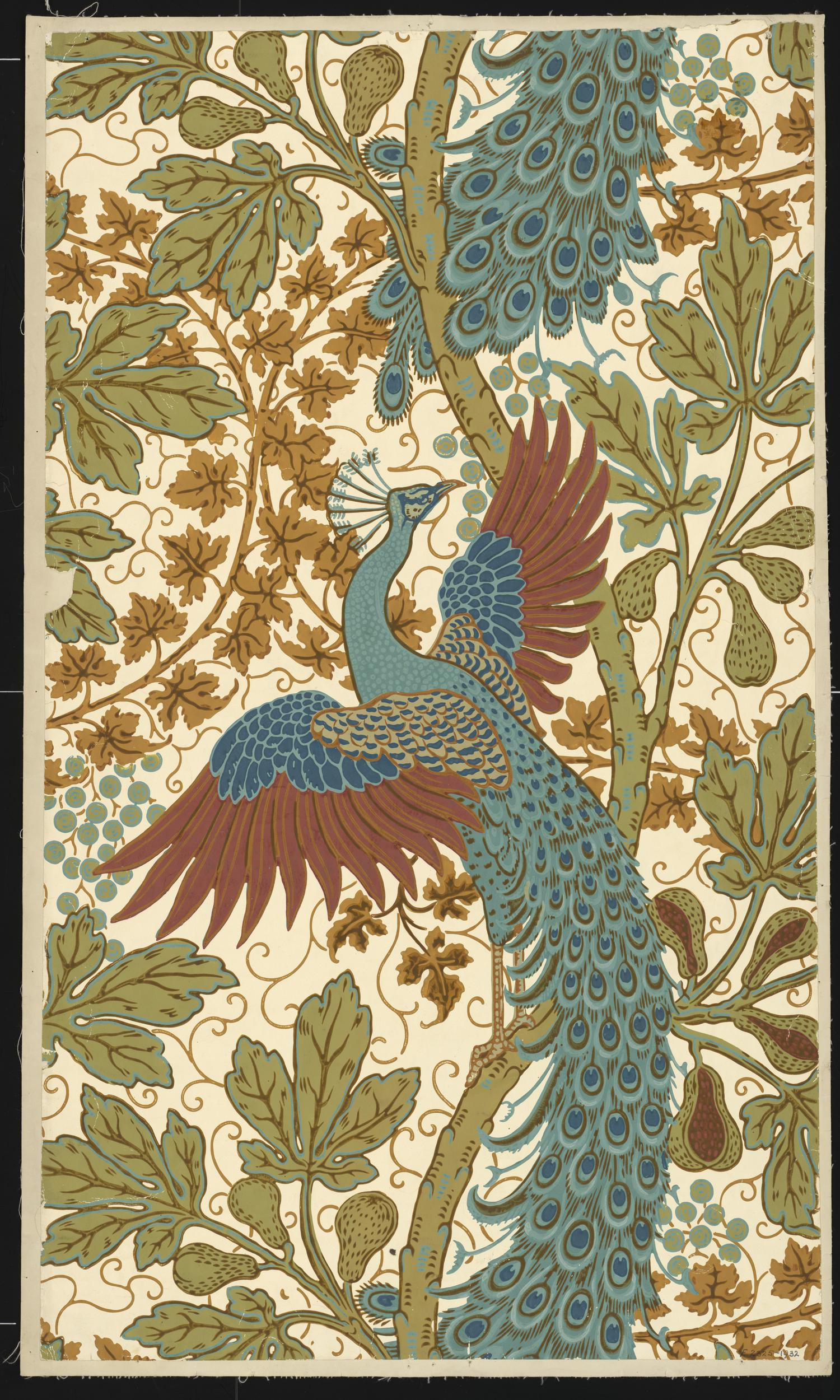 """""""Fig and Peacock"""" wallpaper. ca. 1895."""