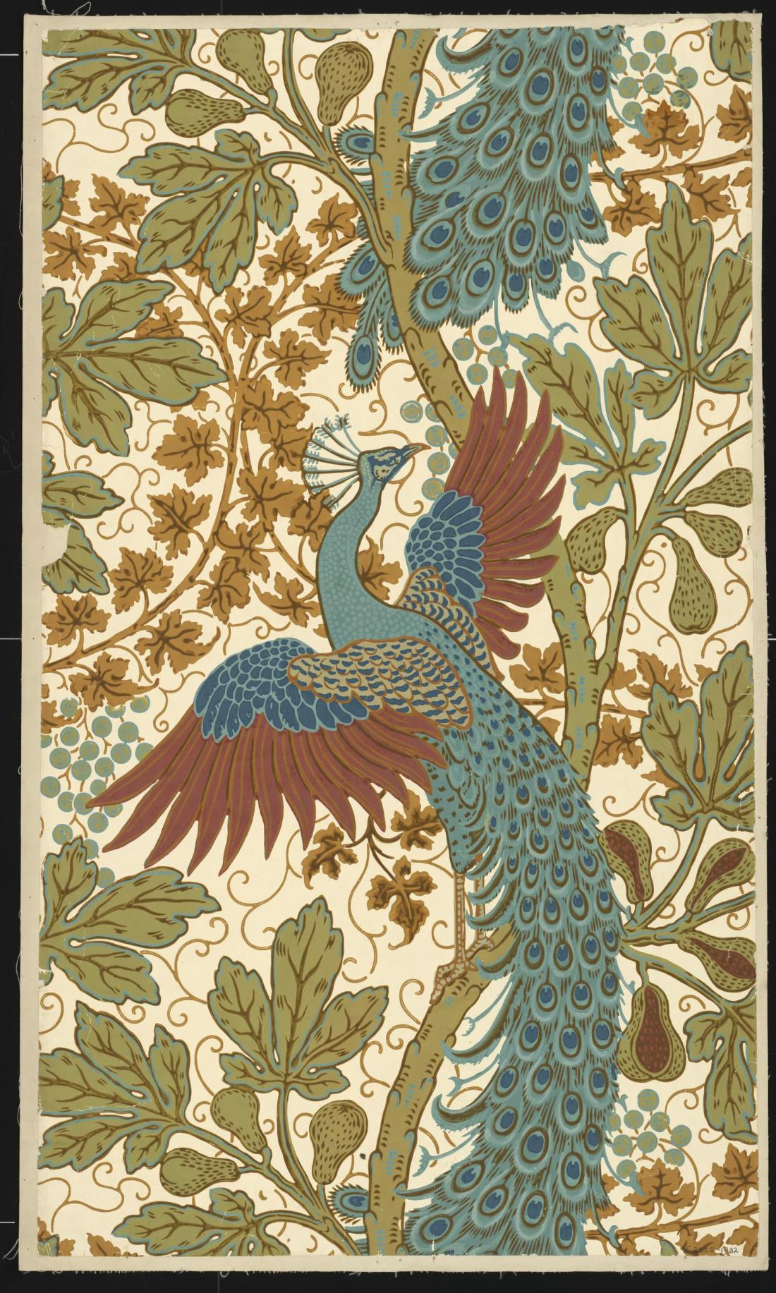 """Fig and Peacock"" wallpaper. ca. 1895."