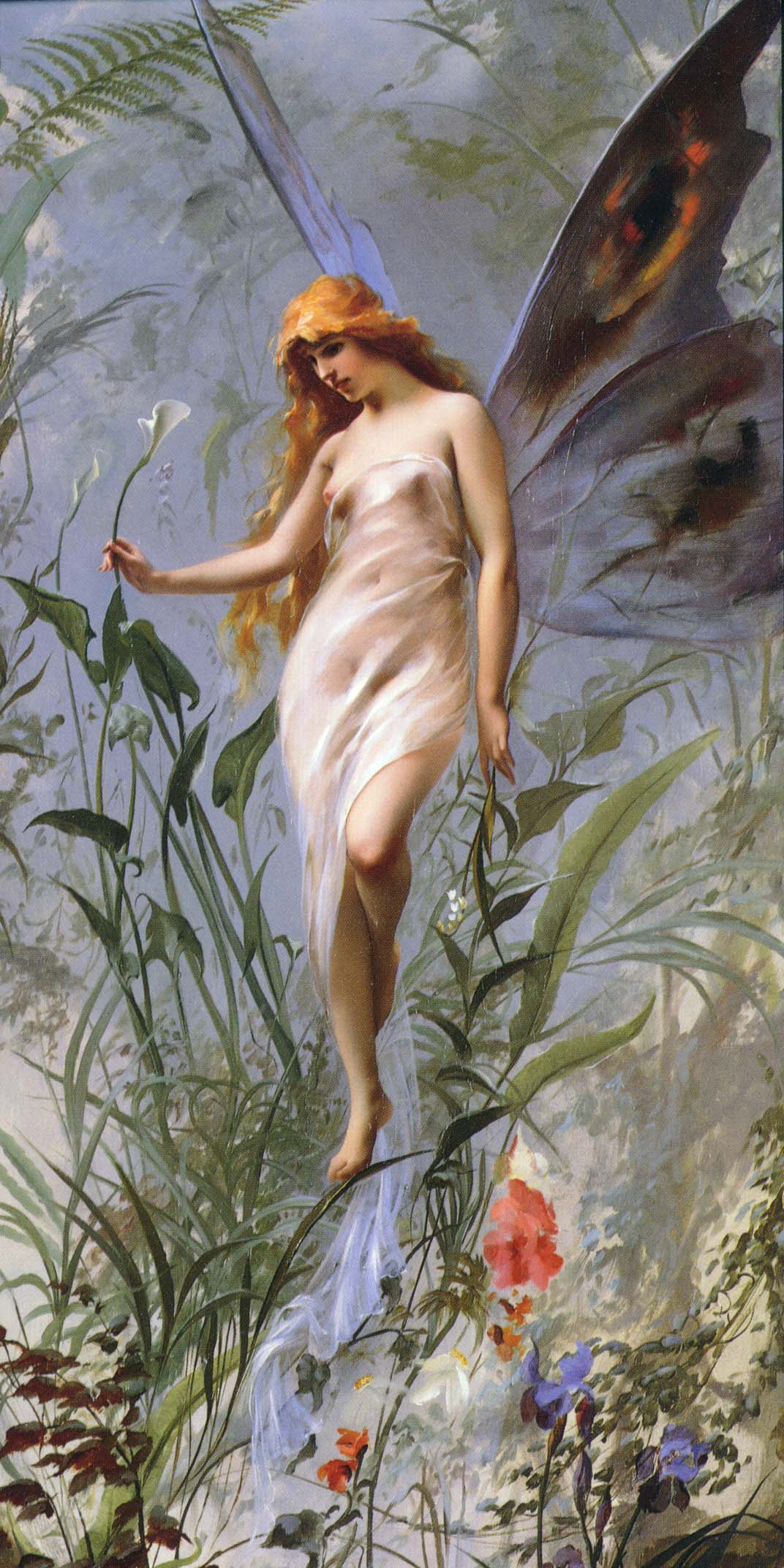 """""""Lily Fairy.""""1888."""