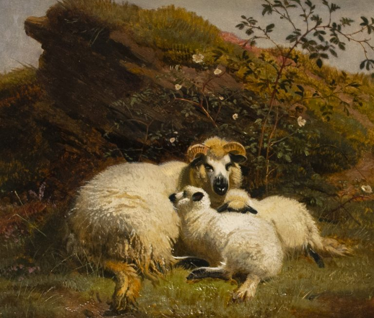 """A Family Party - Sheep resting on a Rocky Bank."" 1850's."