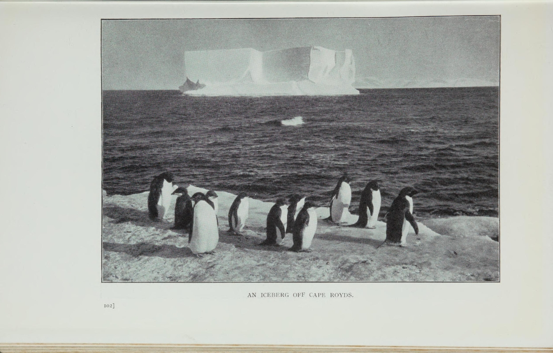 """An Iceberg off Cape Royds."" Page 169."