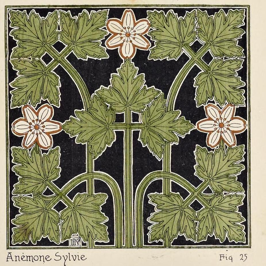 """""""Anemone Sylvie."""" Figure 25. Page 37 (detail)."""