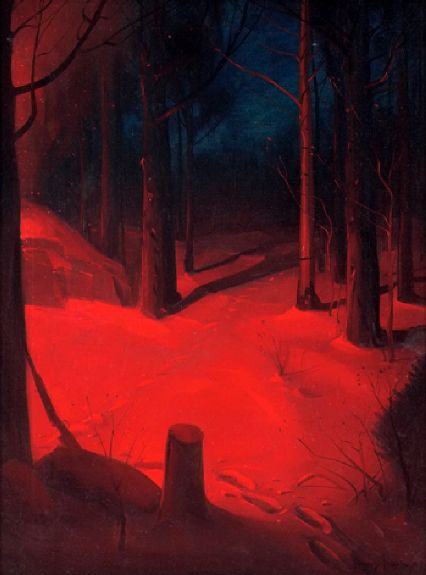 nocturnal-forest-scene-in-winter