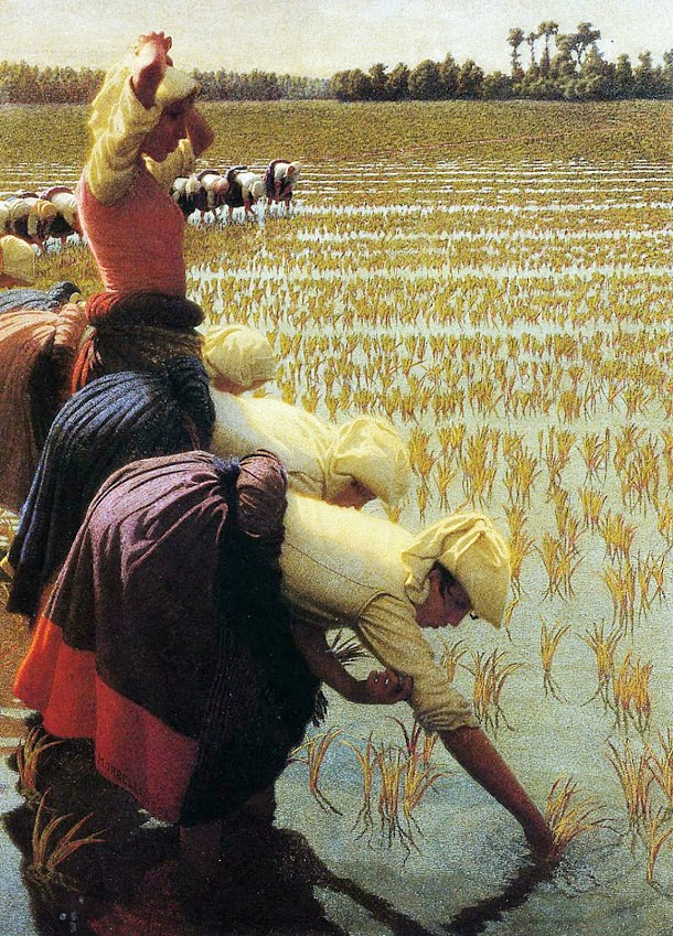 """In the Rice Fields."" 1901."
