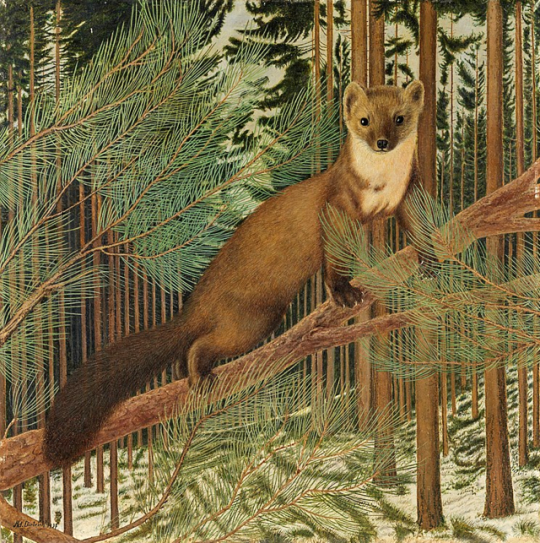 """Marder im Winterwald / Marten in the Winter forest."" 1937. Oil on cardboard."