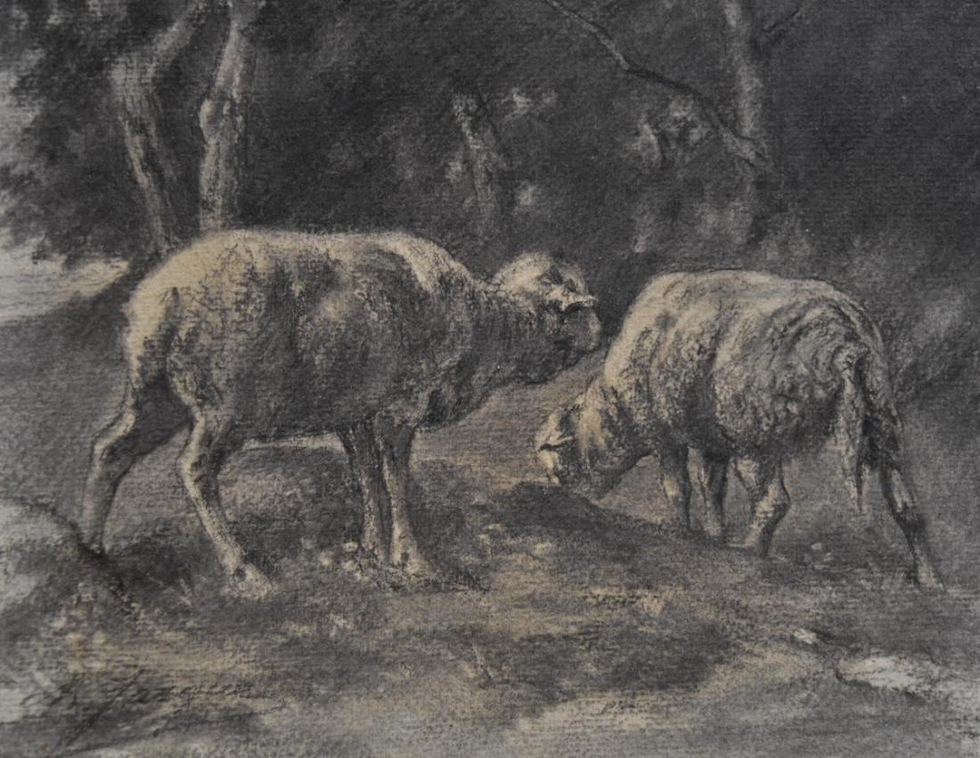 Two sheep. Drawing. No date.