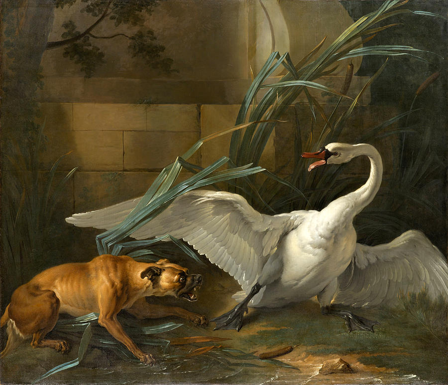 swan-attacked-by-a-dog-jean-baptiste-oudry