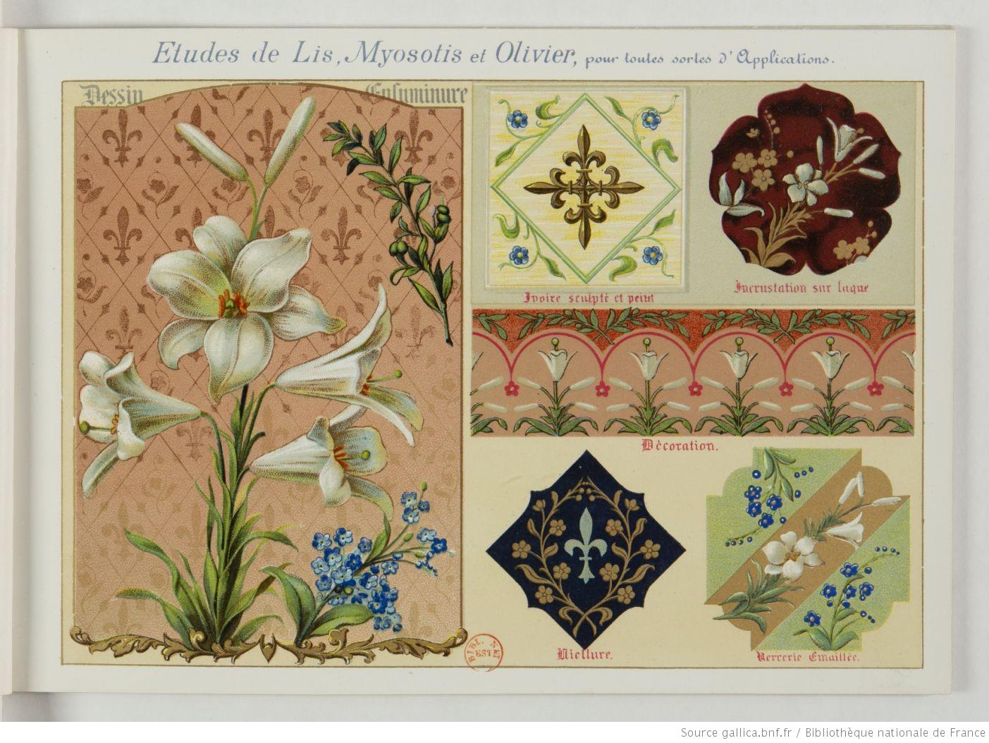 Fleurs_d'après_nature___par_[...]Guillot_Ernest_btv1b52512760g_11