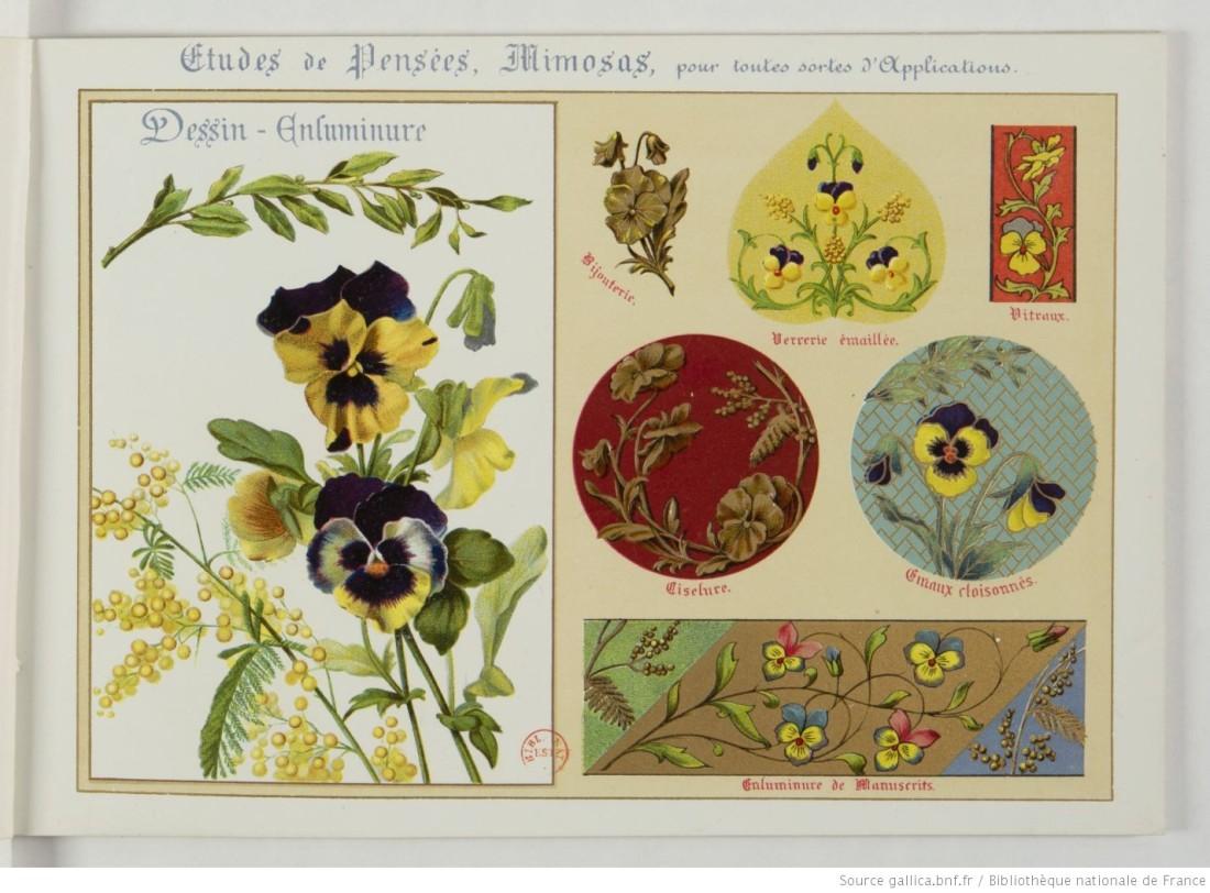 Fleurs_d'après_nature___par_[...]Guillot_Ernest_btv1b52512760g_7