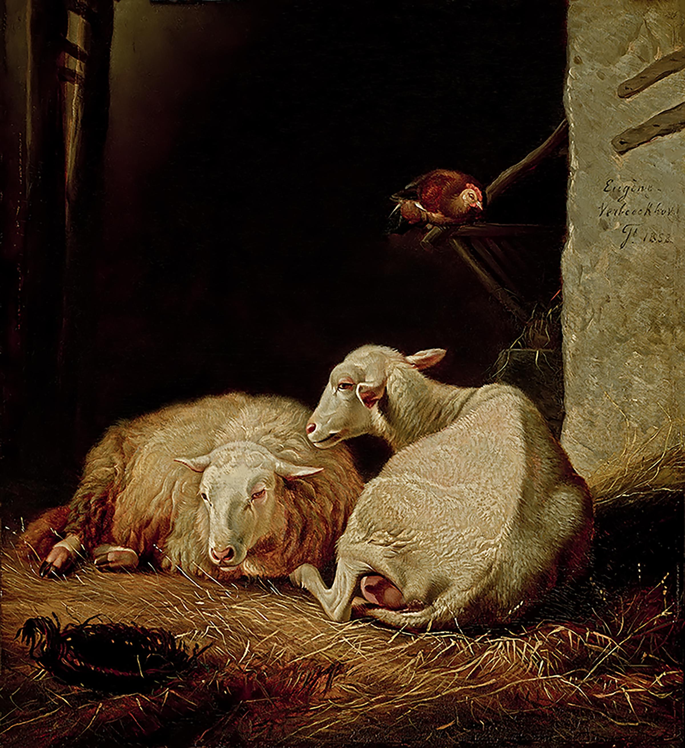Verboeckhoven-Sheep-in-Manger