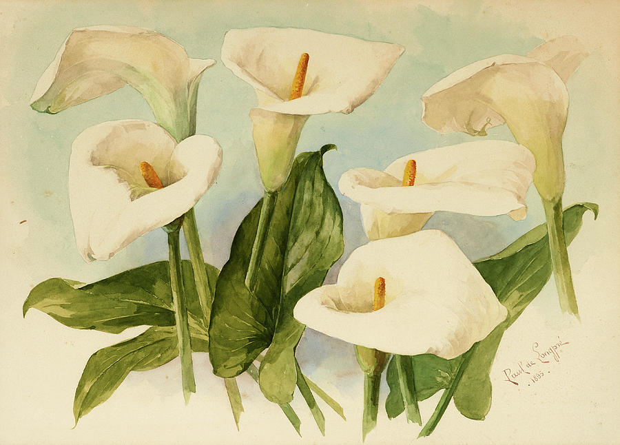 calla-lilies-paul-de-longpre