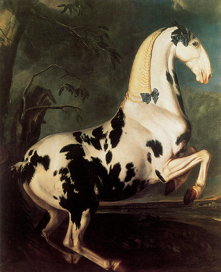 the-piebald-stallion-at-the-eisgruber-stud-johann-george-von-hamilton