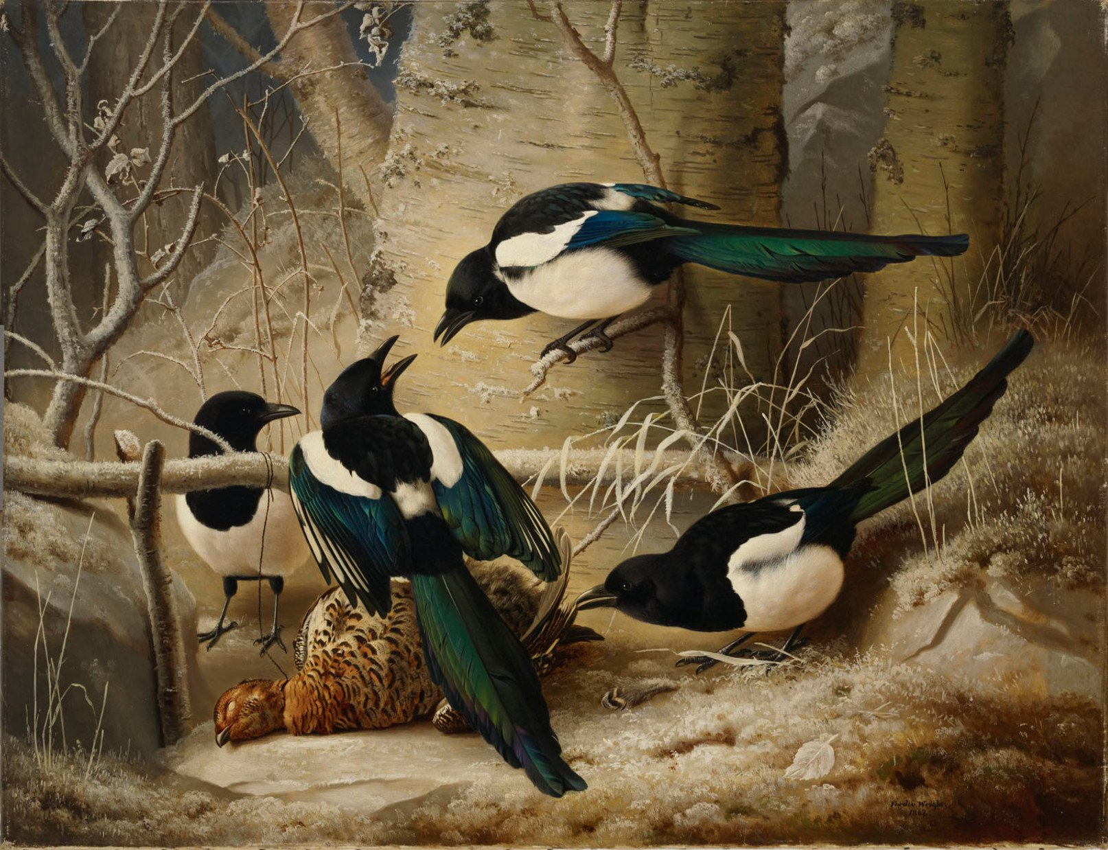 Ferdinand_von_Wright_-_Magpies_round_a_Dead_Woodgrouse_-_A_I_62_-_Finnish_National_Gallery